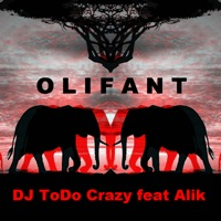 Olifant (feat. Alik) - Single