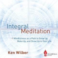 Integral Meditation: Mindfulness as a Way to Grow up, Wake up, and Show up in Your Life (Unabridged)