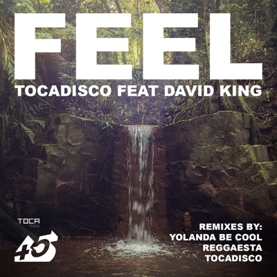 Feel (feat. David King) [Remixes] - EP - Tocadisco album
