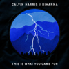 Calvin Harris - This Is What You Came For (feat. Rihanna) 插圖