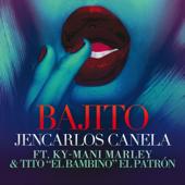 Bajito (feat. Ky-Mani Marley & Tito