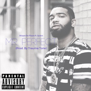 Mr. Perfect (feat. Quavo) - Single Mp3 Download