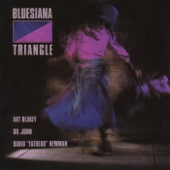 Bluesiana Triangle - Shoo Fly Don't Bother Me