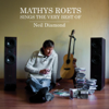 Mathys Roets - Another Day artwork