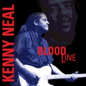 Kenny Neal - Funny How Time Slips Away