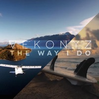 The Way I Do - Vekonyz