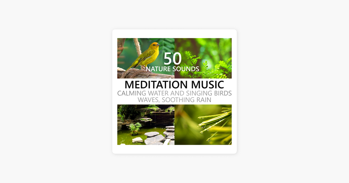 Nature Sounds Meditation Music: Calming Water and Singing Birds, Waves,  Soothing Rain, Beach, Waterfall, Rainforest, Tropical Spa Surf by Calming