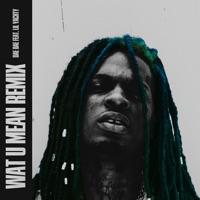 Wat U Mean (feat. Lil Yachty) [Remix] - Single Mp3 Download