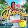 Tropical Beach Party! - Best of Summer Anthem! (mixed by DJ SHOTA) ジャケット画像