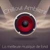 Chillout Ambient: La meilleure musique de fond pour Club & Pub, Musique sensuelle, Musique de fond pour sexe et fête sur la plage - The End Revolution