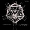 Eighth Blackbird - Filament  artwork