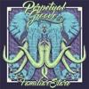 Familiar Stare - EP - Perpetual Groove