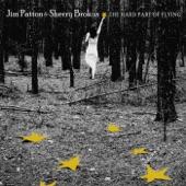 Jim Patton and Sherry Brokus - My Hometown's Not My Hometown Anymore