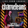 Live From London (Live) - The Chameleons