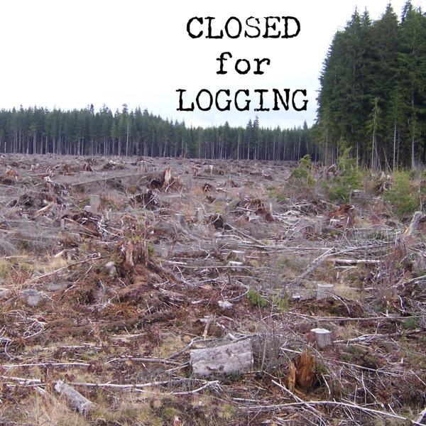 Closed for Logging