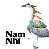 Nam Nhi