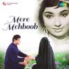 Mere Mehboob Tujhe Meri Muhabbat Ki Kasam (Female)