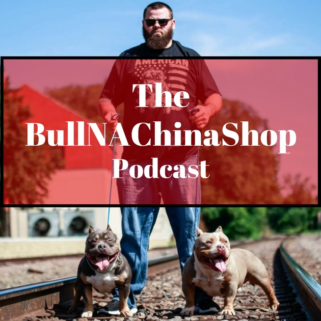 The BullNAChinaShop Podcast by Ty Lumley on Apple Podcasts