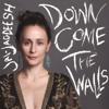 Down Come the Walls - Jai-Jagdeesh