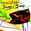 The Very Best of Barnes & Barnes - Barnes & Barnes