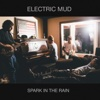 Spark in the Rain - Electric Mud