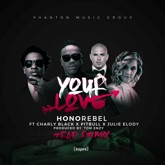 Your Love (feat. Charly Black, Pitbull & Julie Elody) [Tom Enzy Trap Remix] - Single