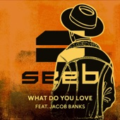 What Do You Love (feat. Jacob Banks) - Single