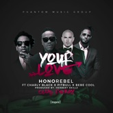 Your Love (Feat. Charly Black, Pitbull & Bebe Cool) Herbert Skillz Club Remix - Single