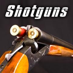Shotguns Sound Effects