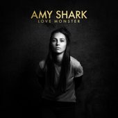 The Idiot - Amy Shark