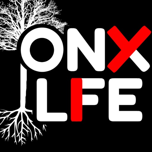 Cover image of The Onyx Life