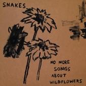 Snakes - Goodnight Irene
