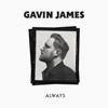Always - Gavin James mp3