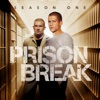 Prison Break, Season 1 wiki, synopsis