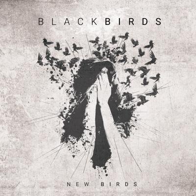 New Birds - Single - Blackbirds