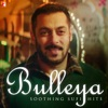 Bulleya - Soothing Sufi Hits