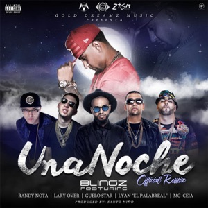 Una Noche (Remix) [feat. Randy Nota, Lary Over, Guelo Star, Lyan el Palabreal & MC Ceja] - Single Mp3 Download