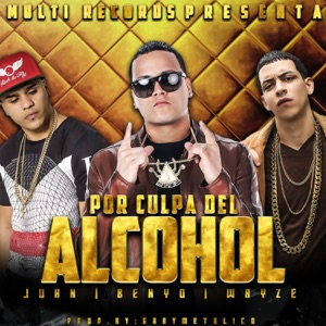 Por Culpa del Alcohol (feat. Juhn & Blue Wayze) - Single Mp3 Download