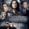 Law & Order: SVU (Special Victims Unit), Season 18 wiki, synopsis