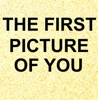 The First Picture of You (Originally Performed By the Lotus Eaters) [Karaoke Version] - Single