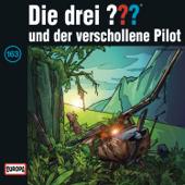 Folge 163: und der verschollene Pilot