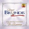 Por Muchas Razones Te Quiero - Grupo Bryndis
