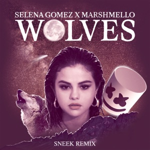 Wolves (Sneek Remix) - Single Mp3 Download