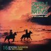 Canto e Encanto Nativo, Vol. 10