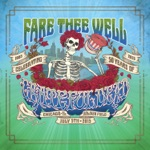 Grateful Dead - Althea (Live at Soldier Field, Chicago, IL 7/5/2015)