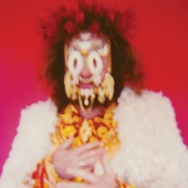 Jim James - Hide In Plain Sight