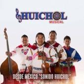 Huichol Musical - La Cusinela