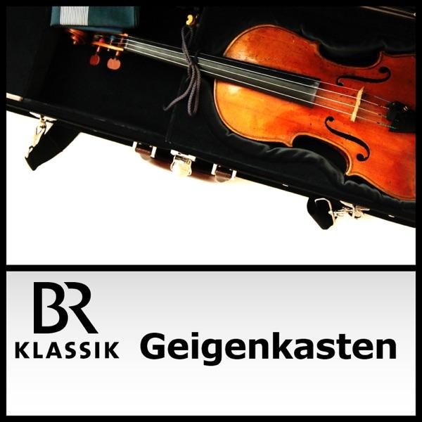 Geigenkasten - Julia Fischers Kolumne