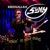 Funkin' in Your Mind artwork