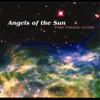 Angels of the Sun - Fred Thrane